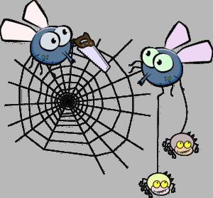 seiten-für-den-seo-spider-ausschließen