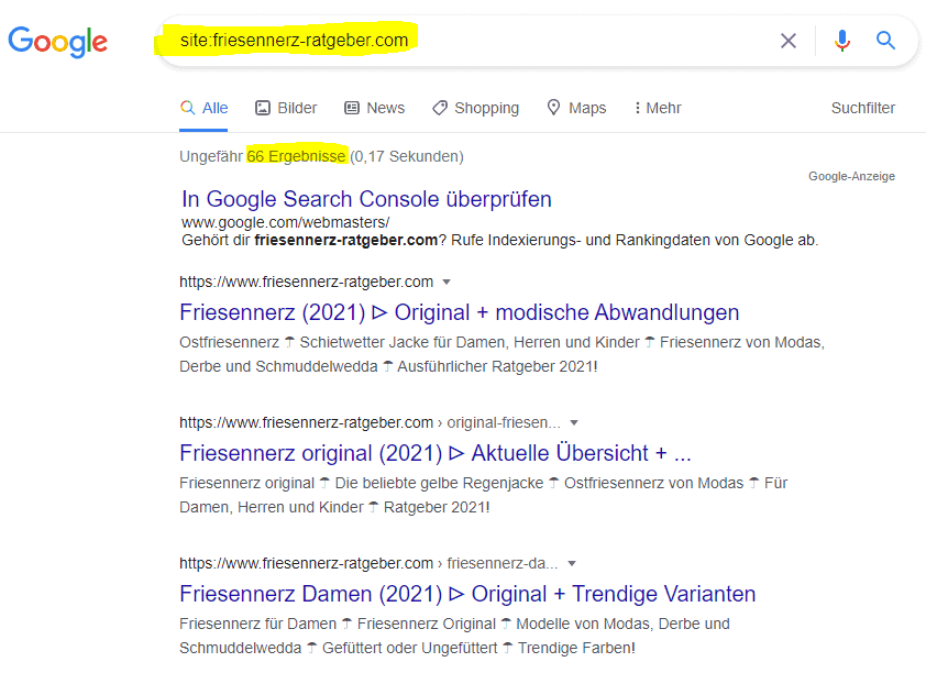 site-operator-google-indexierung1